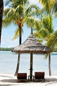 Two sun loungers under parasol and palm trees on idyllic beach