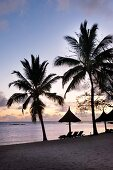 Twilight on sandy beach with palm trees and sun loungers