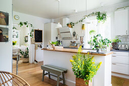 Island counter and many house plants in bright kitchen