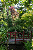 Wooden bridge in densely planted garden