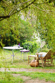 Wooden lounger and metal furniture under weeping willow in garden