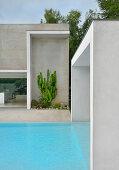 Haus und Pool mit geradliniger Architektur