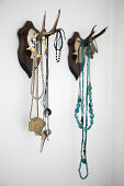 Hunting trophies with antlers used as jewellery rack on wall