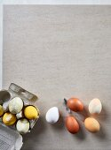 Easter eggs dyed with natural dyes on table and in egg box