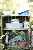 Various enamel bowls, zinc tub and bonsai tree on vintage wooden shelves in garden