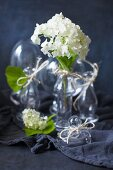 White hydrangea flowers in glass vases
