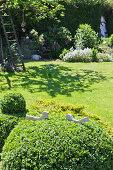 Zwei Vogelfiguren in der Buchsbaumkugel im Sommergarten