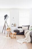 Studio lamp, wooden floor and white walls in living room