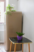 Houseplants on top of coffee table and retro fridge in kitchen
