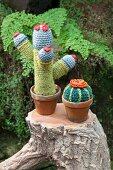 Two crocheted cacti on tree stump in garen