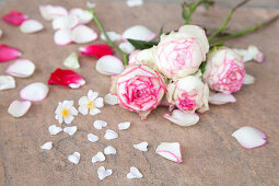 Roses and petals on stone surface