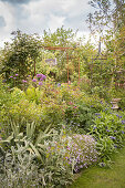 Perennials, roses and alliums in spring flowerbed