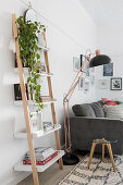 Houseplant and books on ladder shelving next to standard lamp and sofa in living room