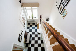 Carpeted staircase and chequered floor