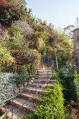Bewachsene Natursteintreppe in einem Garten mit Hanglage