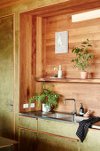 Sink and shelf in alcove with wooden paneling