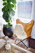 Classic leather chair with fur cover next to houseplant