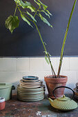 Crockery and houseplants on old wooden table in kitchen with dark wall