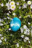 Blue Easter egg painted with chalkboard paint and labelled 'Papa' lying on spring lawn