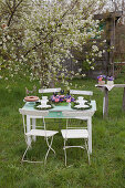 Table festively set for afternoon coffee under flowering apple tree in garden