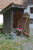 Colourful flowers in wooden tub in tool shed