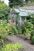 Greenhouse in rustic garden with earth pathways