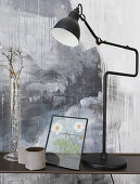 Black anglepoise lamp and pressed flowers in glass frame