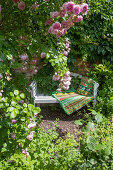 Garden bench and roses in romantic seating area