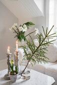 Festive arrangement on coffee table