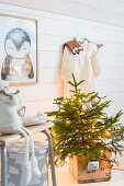 Small Christmas tree with fairy lights in wooden crate
