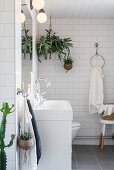 Houseplants in white bathroom