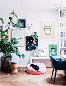 Große Zimmerpflanze vor Wand mit Bildern, Ablage mit Sterndeko und Hund auf Kissen im Wohnzimmer