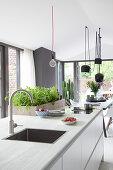 Kücheninsel mit integriertem Spülbecken, dahinter Kräuterkasten
