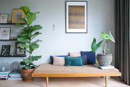 Retro couch next to fiddle leaf fig and gallery of pictures on picture ledges