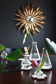 Arrangement of leaves and flowers in laboratory flasks and glass vases