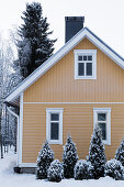 Gelbes Holzhaus mit schneebedektem Garten