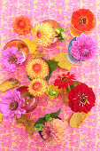 Colourful arrangement of autumn flowers in shades of pink, red and orange on table