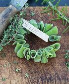 Gerollte Salbeiblätter, auf Draht gesteckt, mit Namensschild