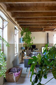 Houseplants and laundry basket in front of desk in open-plan interior with wooden ceiling beams