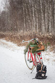 Bicycle with wooden crate and branches on luggage rack on snowy woodland path
