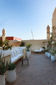 Potted plants on roof terrace with towers on corners