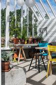 Tisch auf Möbelböcken mit Topfpflanzen im Gartenhaus