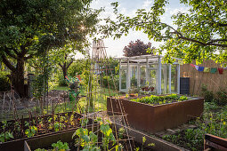 Vegetable Garden With Raised Beds And Greenhouse