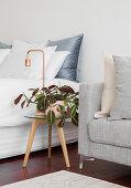 Runder Beistelltisch mit Zimmerpflanze und Tischlampe zwischen Doppelbett und Polstersofa