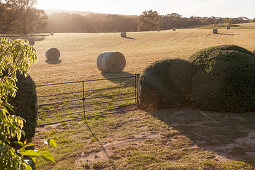 Hay bales in the landscaped garden