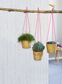 Homemade hanging baskets with woven planters