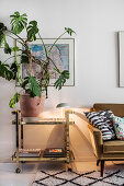 Swiss-cheese plant on gold serving trolley next to sofa