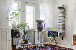 Shell chair, bookshelves and plant stands below window