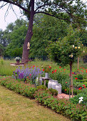 Farm Garden With Stem Rose And Flowering Poppy