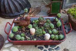 Vintage baking dish planted with succulents and decorated with bird ornament and snail shells